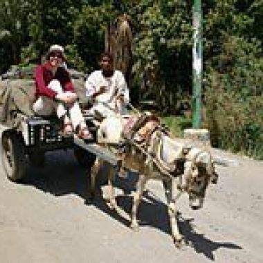 Niamh, travelling with a local farmer in the Nile Valley
