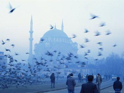Blue Blue Istanbul