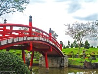 THE JAPANESE GARDEN | All About Jennifer