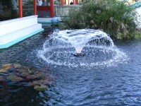 Solar Powered Small Pond Fountains Pumps | Backyard Design ...