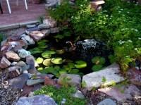 Garden Fish Pond Ideas | Backyard Design Ideas