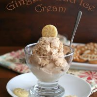 Gingerbread Ice Cream - Low Carb and Gluten-Free