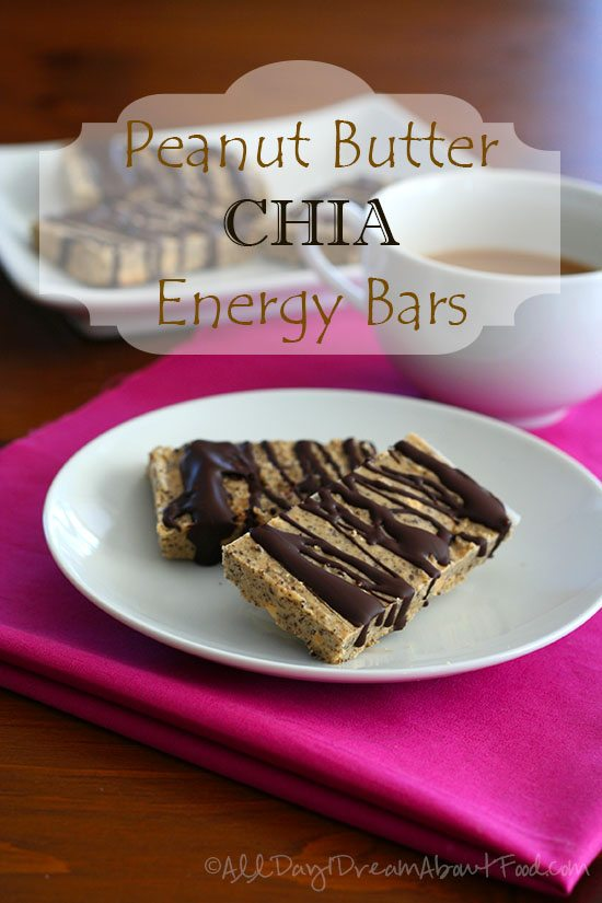 Low Carb Peanut Butter Chia Seed Protein Bars All Day I Dream - free fact sheet