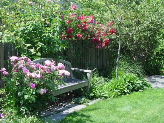 ▷ Gartengestaltung Ideen Beispiele, wie Sie Wasser sparen könnten - gartengestaltung ideen beispiele