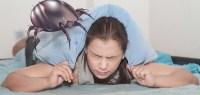 Milben im Bett: Tipps zur Bekmpfung