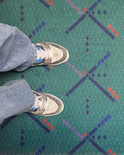 dust mites & carpet