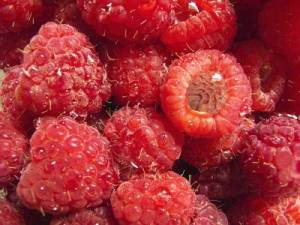 raspberry allergy