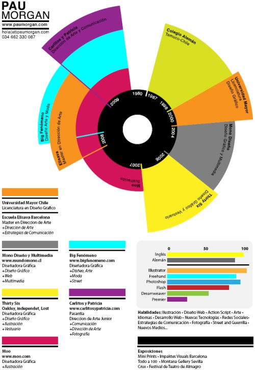 Infographic Resume 35 Creative Examples - infographic resume examples