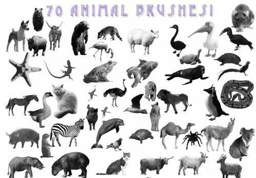 Animal Photoshop Brushes 600+ Free Images of Animals