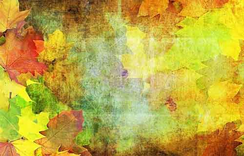 Free Fall Themed Desktop Wallpaper Leaf Background 22 Free Textures For Fall Design Projects