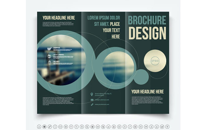 tri fold brochure software