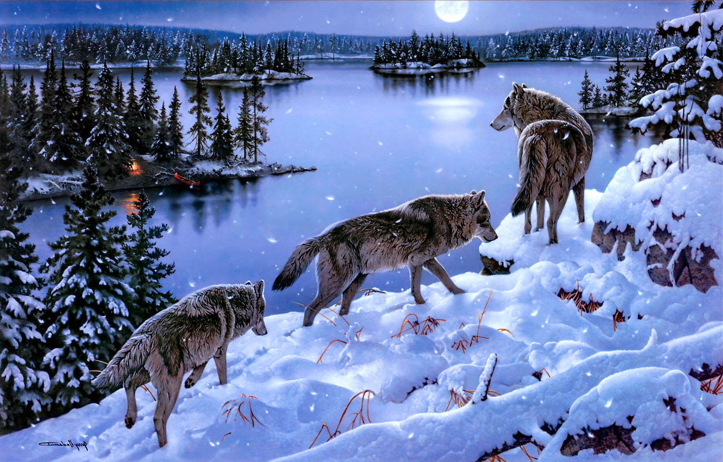 Awesome Animal Wallpapers Wolf Awesome Hd Wallpapers Pictures High Quality All