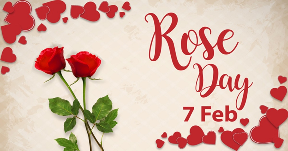 Cute Wallpapers Hd For Whatsapp Rose Day Images Hd Wallpapers Happy Rose Day 2018 3d