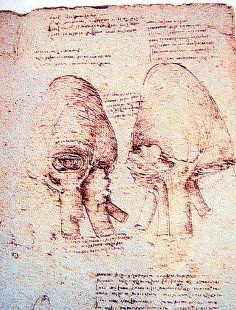 Armenian Writings of Leonardo da Vinci Art-A-Tsolum
