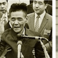 Final straggler: the Japanese soldier who outlasted Hiroo Onoda