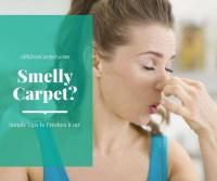 clean smelly carpet  Floor Matttroy