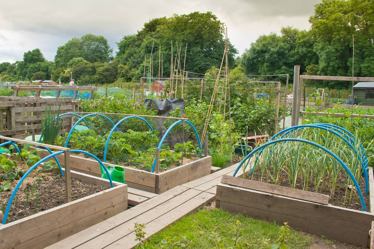 How To Construct Raised Beds Raised Deep Bed Growing