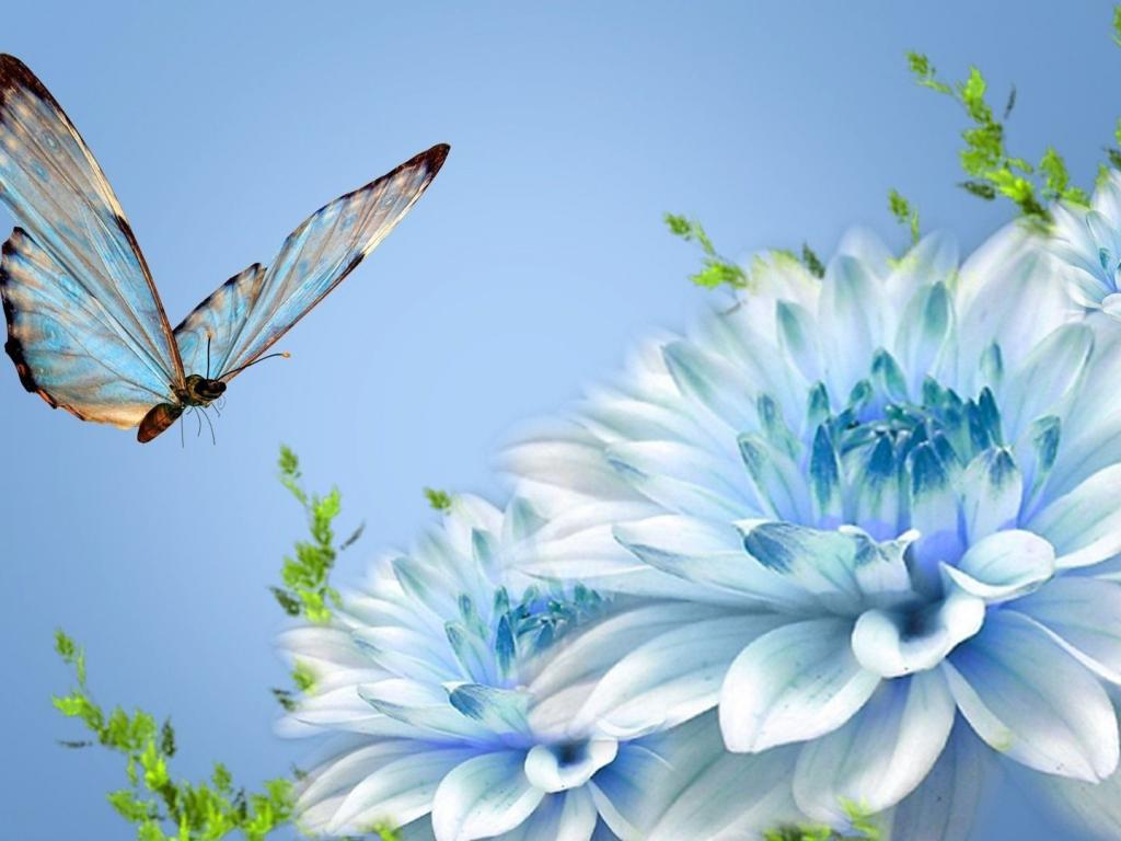 Hd Wallpapers Motivational Quotes Animated Pictures Of Blue Flowers And Butterfly In Hd