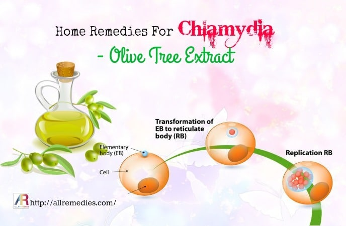 Top 19 Home Remedies For Chlamydia Causes, Symptoms, Diagnosis
