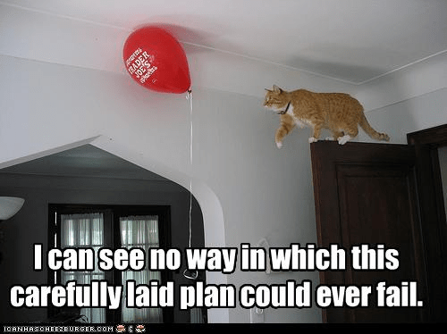 LOLcat - I can see no way