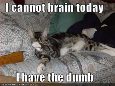 lolcats-lazy-habit-cant-brain