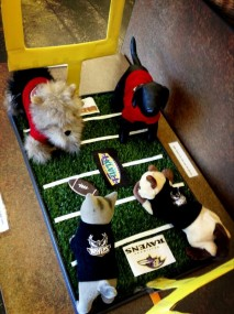 super bowl puppies