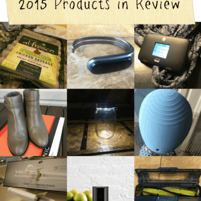 2015: A Year of Reviews in Review