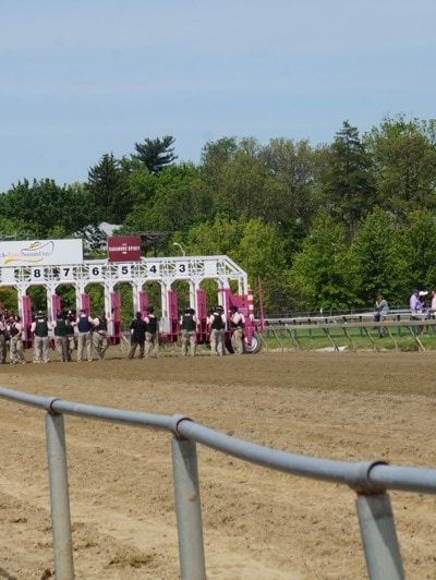 Five Lessons Learned at Pimlico This Weekend