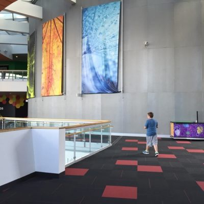 Smarten your Summer at the Maryland Science Center