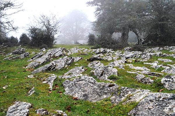 piedras-campa