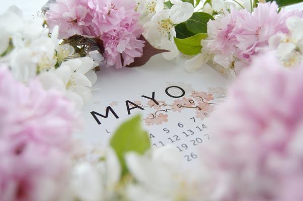 AllYourSites-Descargable-Mayo-5