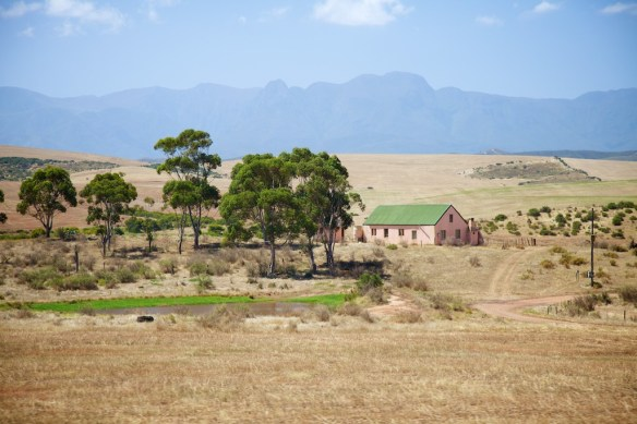 Farm along the Garden Route, South Africa  (c) Allyson Scott