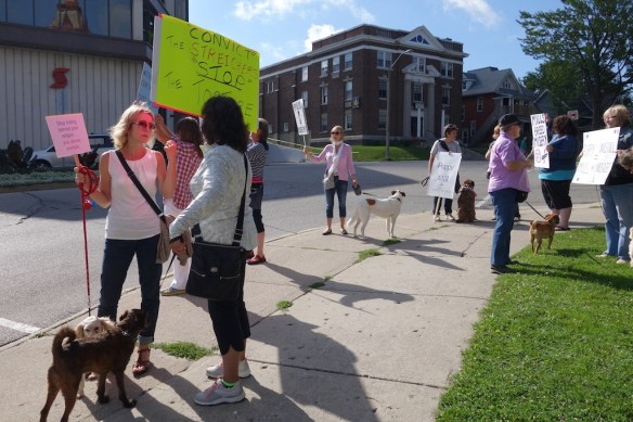 Animal welfare supporters outside Perth County Court House