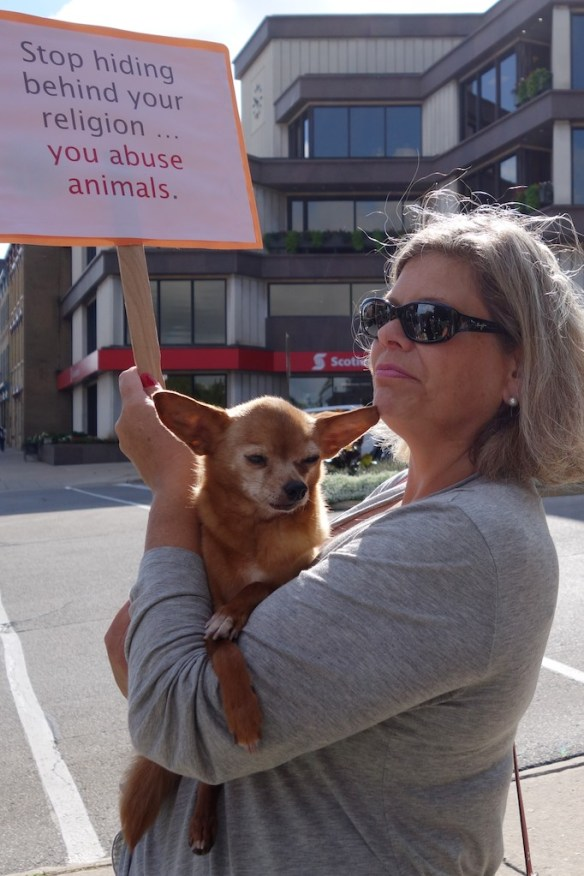 Animal welfare supporter outside Perth County Court House