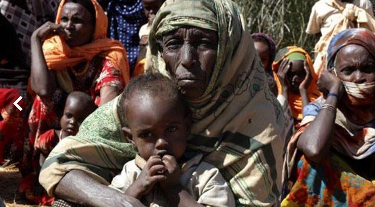 Famine 2