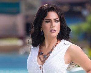 """دنيا المصرى تتحدث عن """"البيت الكبير"""" فى حوار على صفحة قناة النهار"""