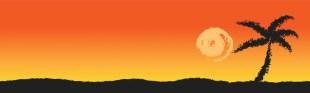 palm-tree-at-sunset-871294684391V5w