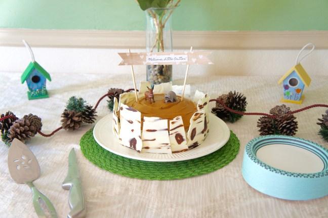 Birch Bark Cake