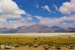 wulkan-wspinaczka-arequipa
