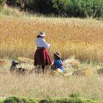 titicaca-lake-trek