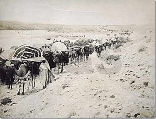 saharan-caravan-on-the-march-algeria-1896