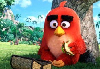 Angry-Birds-teaser-trailer-700x300