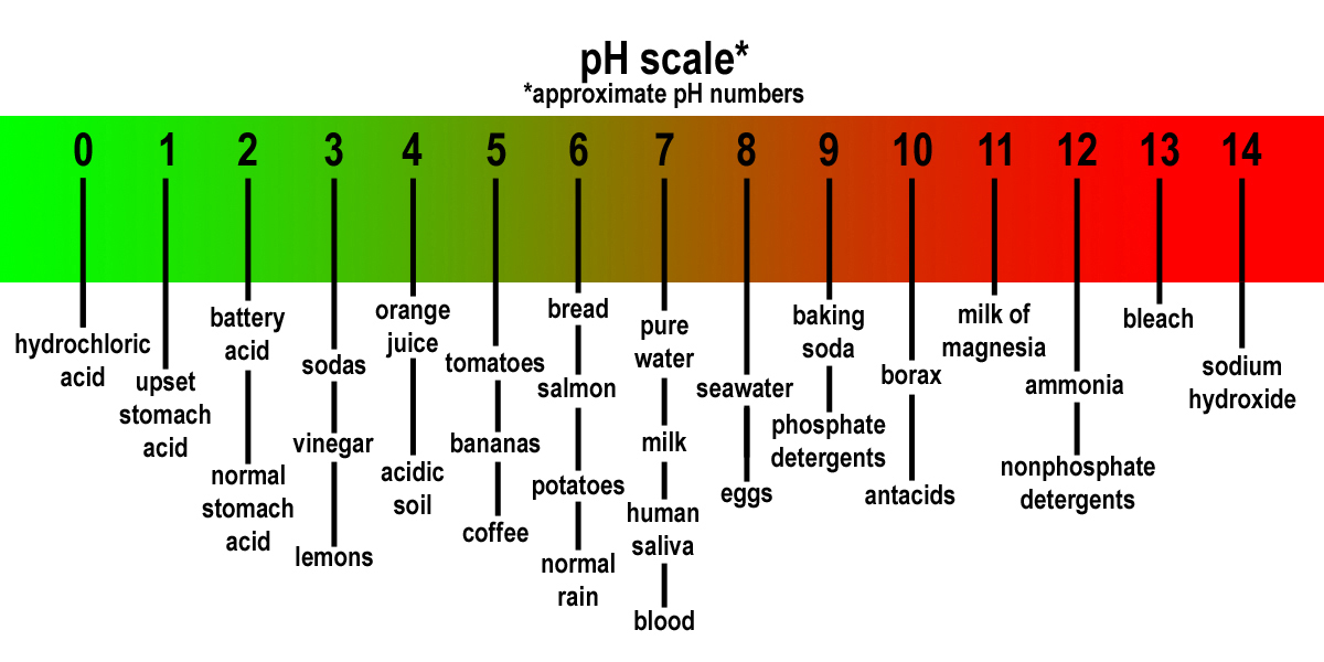 Are you Acidic or Alkaline?