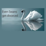 It's not just about talking to lawyers when divorcing……