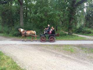 Hestevogn København