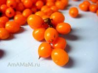 Очень полезные и вкусные ягоды облепихи!