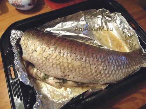 Запекание белого амура в духовке - готовый амур
