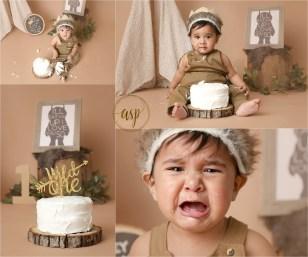 boy cake smash, where the wild things are cake smash,