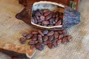 cocoa beans, chocolate