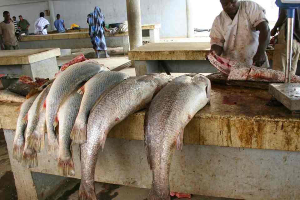 Mercado do peixe de Tripoli